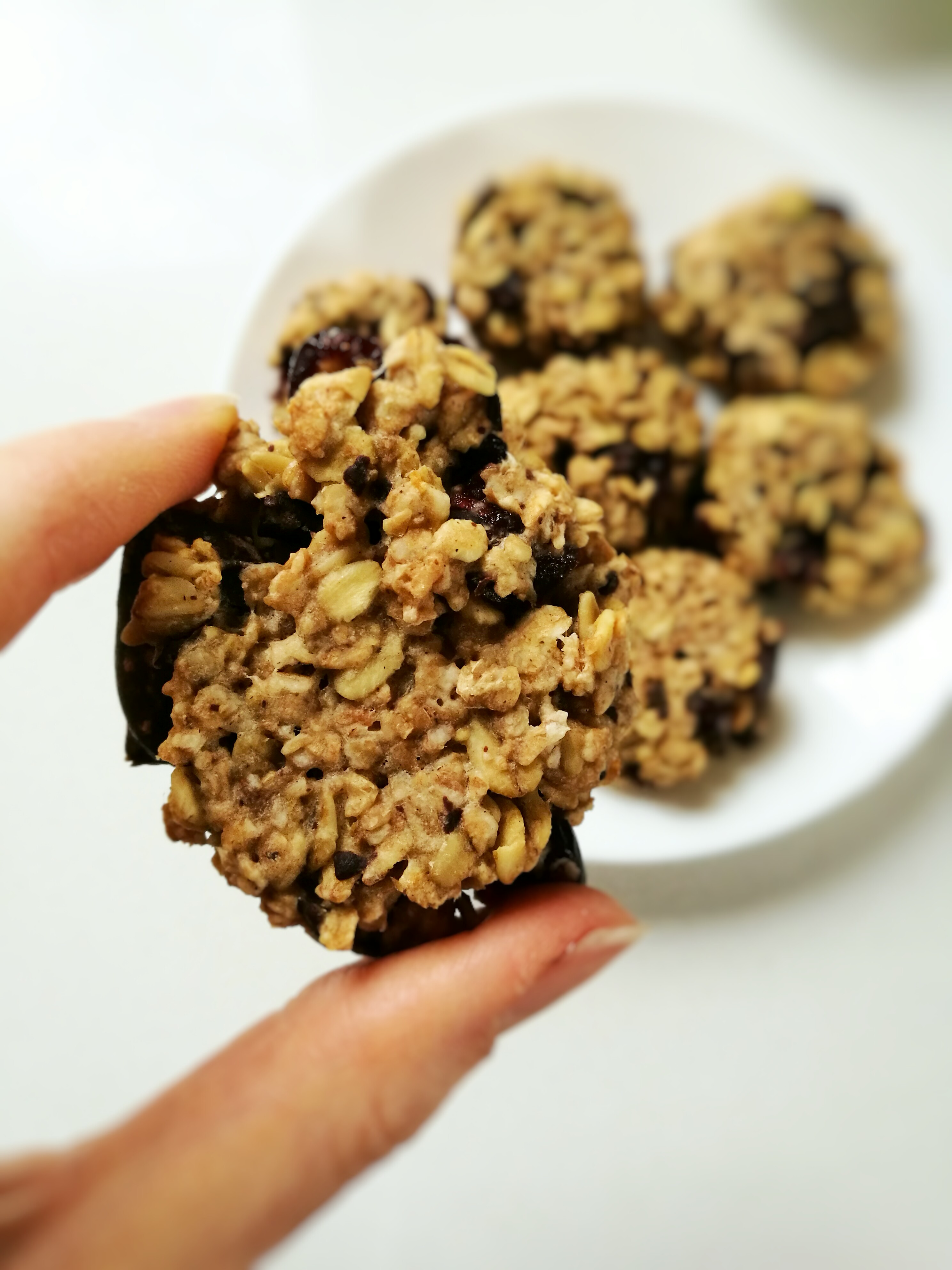 Dark Chocolate and Cranberry Oatmeal Cookie